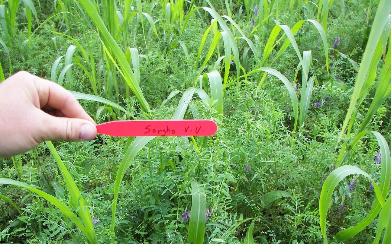 Site rencontres agriculteurs