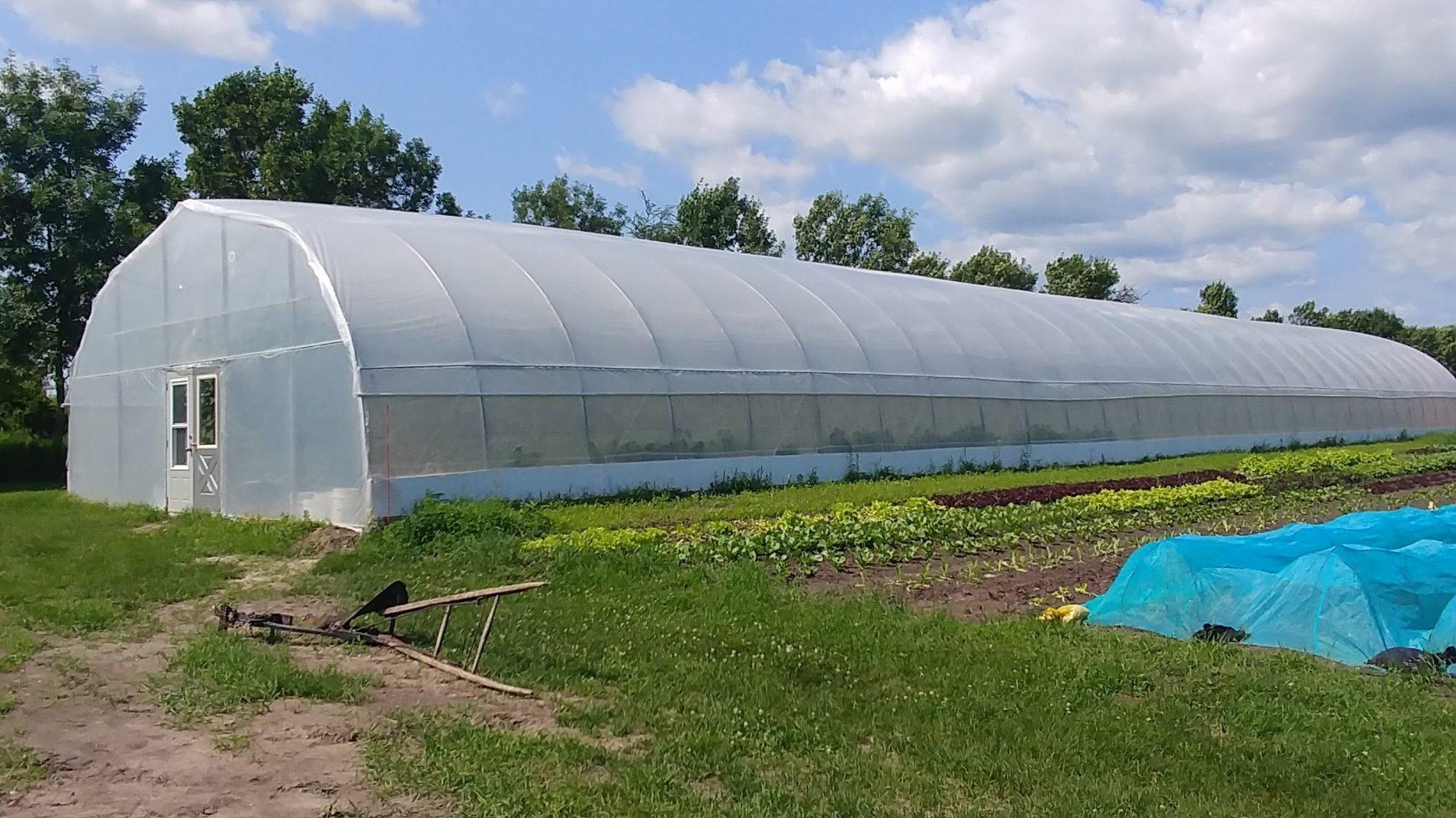 Grand tunnel et champs de légumes